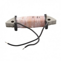 Internal Ignition Coil