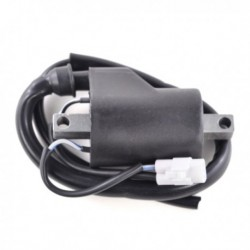 Snowmobile Ignition Coil