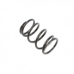Primary Clutch Spring