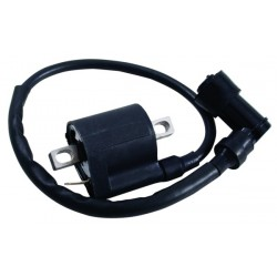 Type 1 Ignition Coil
