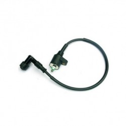 Ignition Coil: GY6 150 cc