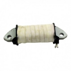 Stator Ignition Coil
