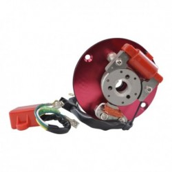 Stator and Flywheel Kit