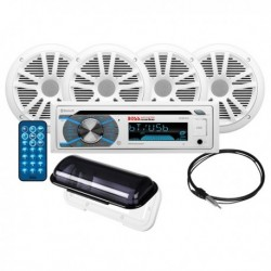 Audio Receiver Kit with S